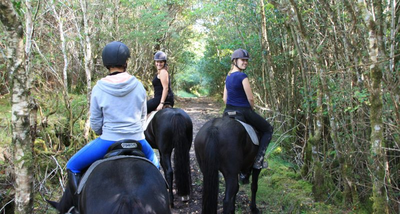 forest-horse-riding-girl-family