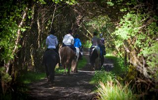 trail riding holiday