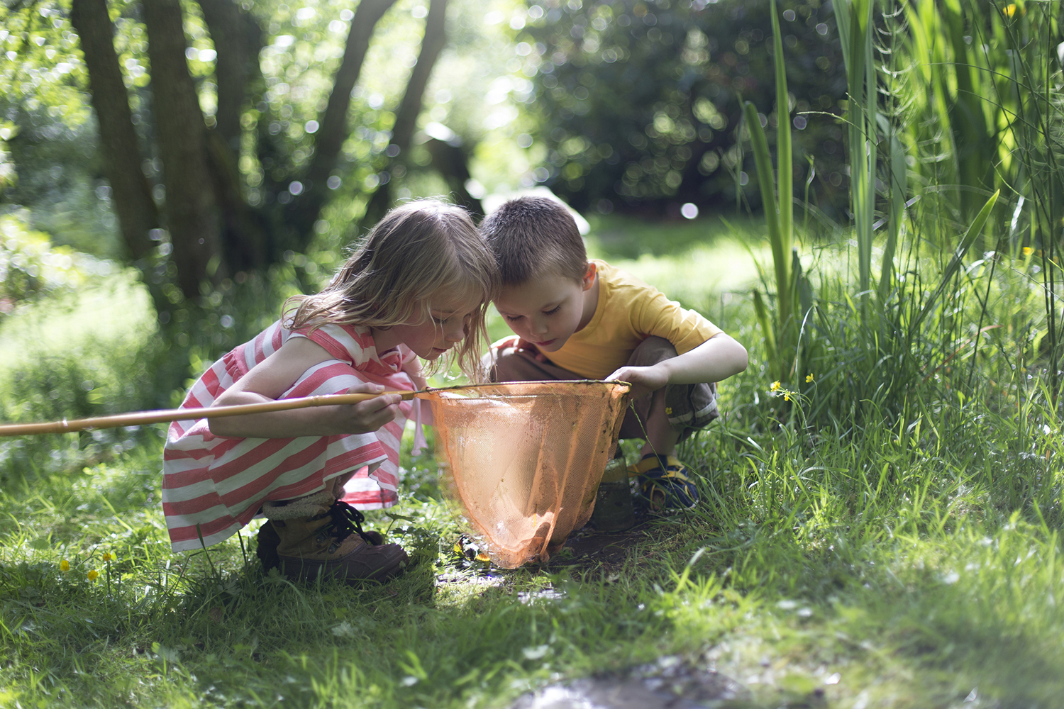 eco kids klub - fun and learning in nature